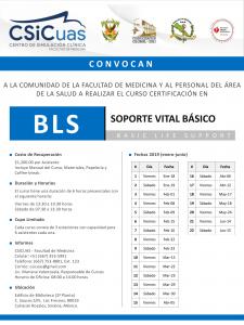 Convocatoria BLS 2019-1